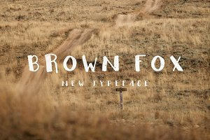 Brown Fox New Typecafe