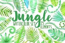 Watercolor jungle. Tropical leaves