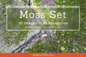 Moss Textures Backgrounds Set