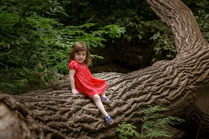Little girl sitting on a tree trunk
