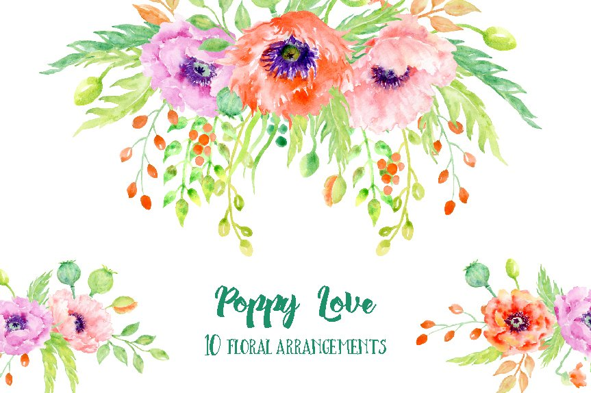 Watercolor poppy floral arrangements illustrations creative market mightylinksfo