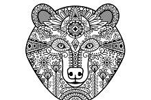 Hand drawn floral decor bear head