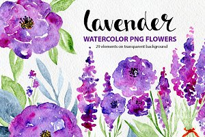 Watercolor lavender, roses flowers