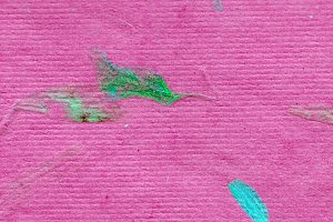 Flower Petal Paper -High Resolution-