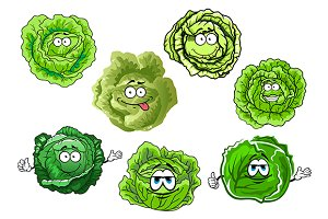 Green heads of cabbage vegetables