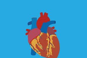 CPR training, vector illustration