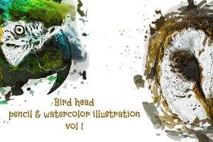 Bird Head Pencil & Watercolor vol 1