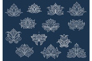 Isolated paisley flowers