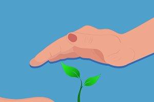 hands protecting plant, care concept