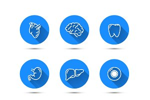 Nine outline icons of humans organs