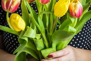Tulips in female hands