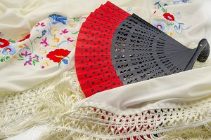 Fan and embroidered shawl