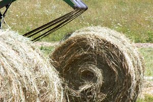 Hay Bale Harvest - Rural Life