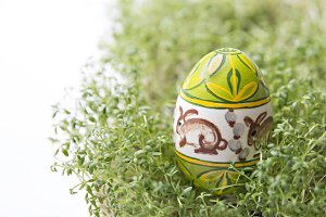 Easter eggs on green cress