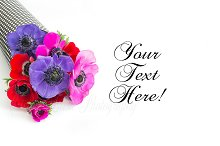 Flower styled stock photography