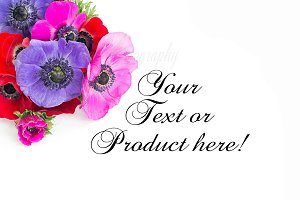 Flower mockup stock photo