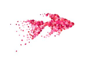 Goldfish of pink rose petals. Vector