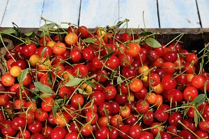 Cherrys.