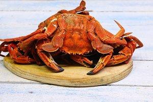 Velvet crabs.