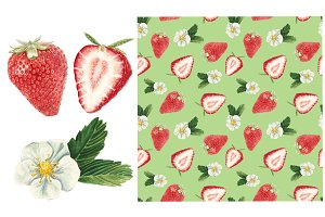 Watercolor strawberry set