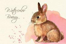 Watercolor bunny clip art