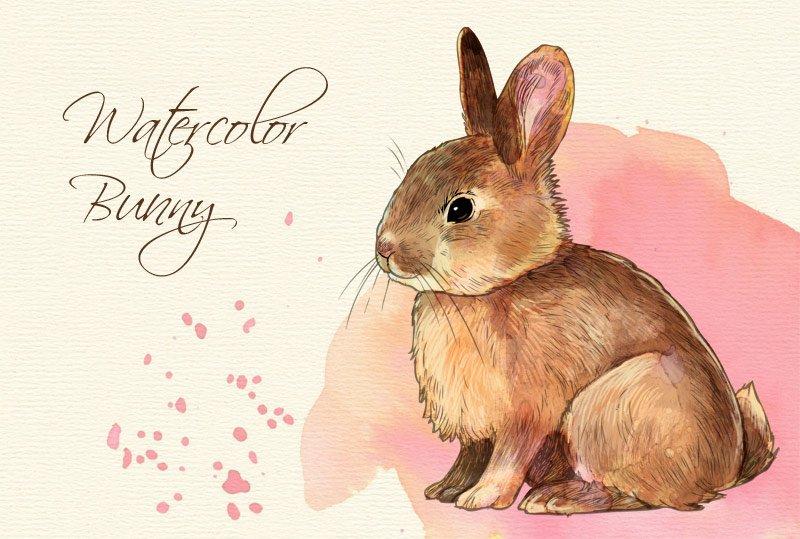 Watercolor Style Bunny Clip Art Illustrations Creative Market