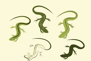 Decorative lizard vector set