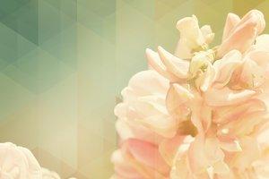 Geometric flowers I