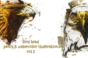 Bird Head Pencil & Watercolor vol 2