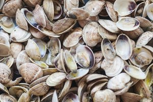 Clams cooked