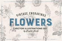 66 Flowers - Vintage Engravings Set