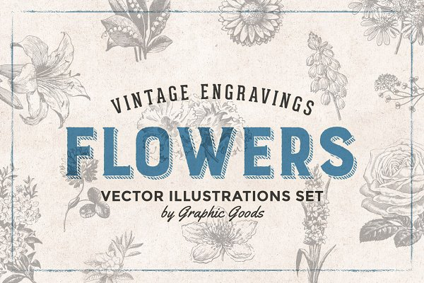 Flowers Engravings