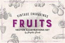 84 Fruits - Vintage Engravings Set