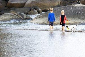 boys on beach with dog photo