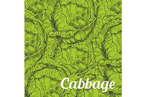 Green cabbage vegetable background