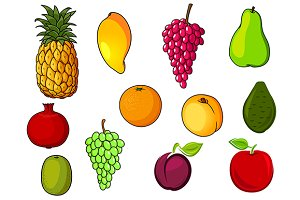 Fresh tropical and garden fruits