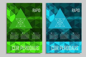 Brochure triangular design