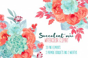 Succulent mix RB-15