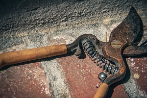 Rusty Tools 1 (Photo)