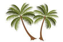 Palm Vector illustration