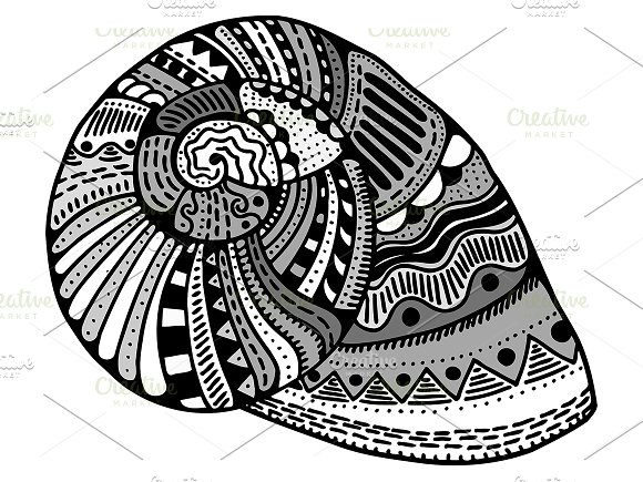 Vector stylized shell