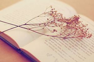 Flower and good book