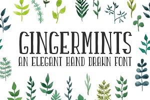 Gingermints font