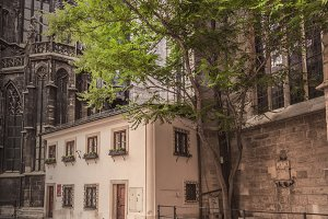 Lonesome tree / church