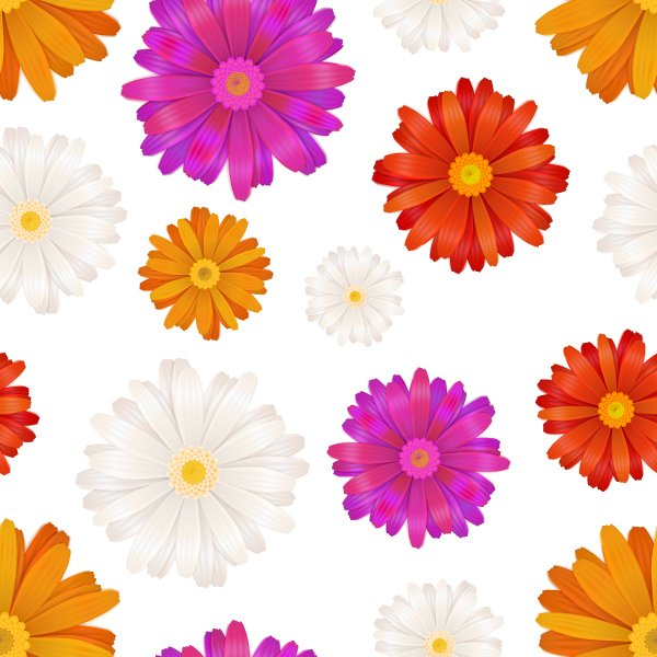Colourful gerbera flowers on white graphic patterns creative market mightylinksfo