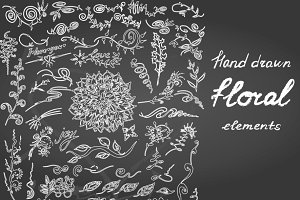 Vector floral elements on chalkboard