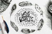 Hand Drawn graphic feather