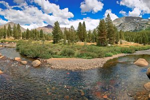 Mountain River in California