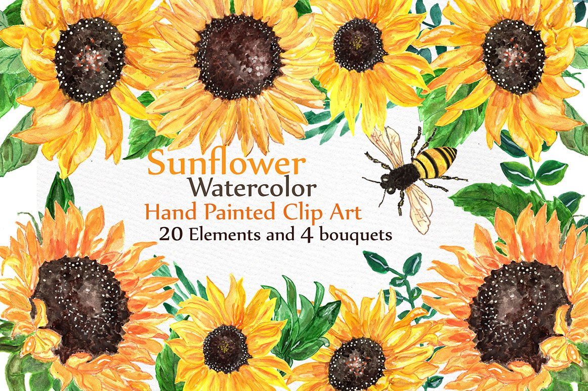 Watercolor sunflowers clipart ~ Illustrations ~ Creative ...