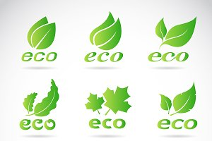 Green eco icons badge vector.